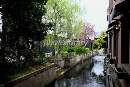 長浜市の米川 写真素材 [ 139332...