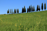 Orcia countryside valley Stock photo [1386558] Italy
