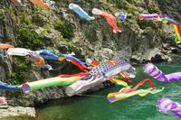 Carp swim in the Yoshino Oboke Gorges Stock photo [1389110] Carp