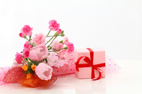 Gifts Mother's Day and Carnation Stock photo [1389174] Carnation