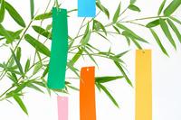 Tanabata bamboo leaves and strip Stock photo [1389200] Tanabata