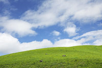 Blue sky of plateau Stock photo [1394592] Empty