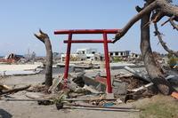 Remaining torii Stock photo [1398024] Miyagi