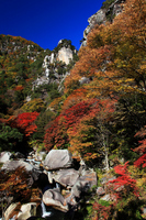 Autumn of NoboriSen KaiSatoshi circle Peak Stock photo [1481594] Yamanashi