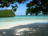 Beach to look at from the shade of a tree Stock photo [1482848] Palau