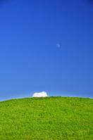 Grassland and blue sky Stock photo [1483576] Prairie