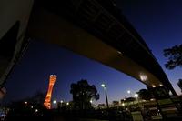 神戸ポートタワーと阪神高速