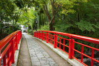 Shuzenji Katsura Bridge Stock photo [1487576] Shuzenji