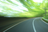 fresh green of road flowing Stock photo [1586820] Roadway