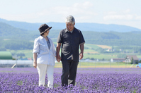 Senior couple walking in the middle of a lavender field Stock photo [1588733] Walk