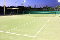 Night game Tennis Stock photo [1591585] Tennis
