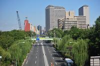 High-rise building of Toyocho and Kasaibashi street from Kiba Park Bridge Stock photo [1592755] Kiba