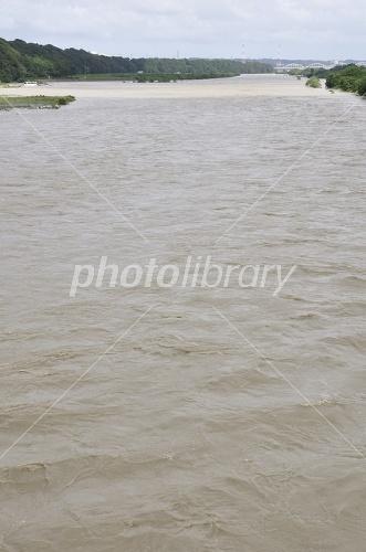 相模 川 水位
