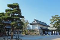 Gate and pine trees of Saga Castle killer whale. Japan