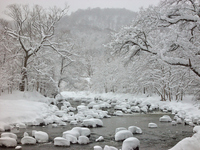 Snow snow hat Oirase Stream Stock photo [1691769] Winter