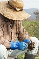 Men who the field work Stock photo [1696322] Field
