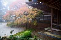 Raizan thousand 絋?絲? Daihi King Academy Stock photo [1696496] Daikaede