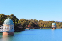 Fall of Tamako Stock photo [1696725] Autumn