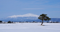 Shonai plain-Mt.Chokai Stock photo [1761839] Yamagata