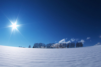 Hill of winter Biei sun and Mild Seven Stock photo [1762942] Hokkaido