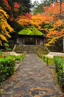 Autumn of Honen Stock photo [1763786] Kyoto
