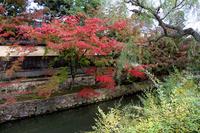 Kurashiki and autumn leaves Stock photo [1769559] Kurashiki