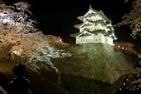 Hirosaki Castle of night view Stock photo [1775554] Hirosaki