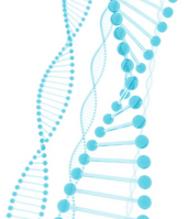 DNA of blue glass [1862175] DNA