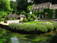 Rainbow trout farms in the UK Cotswolds Bibury Stock photo [1872473] United