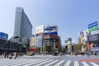 Shibuya scramble intersection Stock photo [1874313] Tokyo