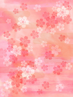 Cherry background image [2097312] Flower