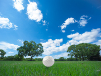 Golf tee shot Stock photo [2183920] Golf