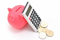 Pig piggy bank calculator money Stock photo [2192581] Piggy