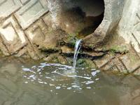 Human sewage Stock photo [2193348] Life