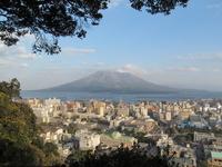 View from Sakurajima Shiroyama Park Stock photo [2315046] Cherry