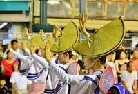 Tokushima Awa dance 2012 Stock photo [2315839] Tokushima