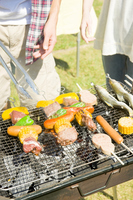 Barbecue landscape Stock photo [2319247] People