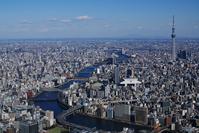 Sumida River and Tokyo Sky Tree Stock photo [2445959] Tokyo