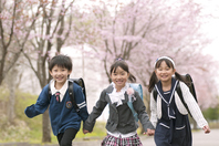 Elementary school students running the cherry tree-lined street Stock photo [2446742] Person