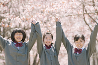 Holding Hands junior high school students in front of the cherry tree Stock photo [2446987] Person