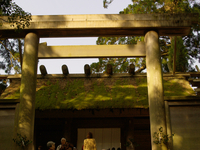 Grand Shrine of Ise Stock photo [70518] Grand
