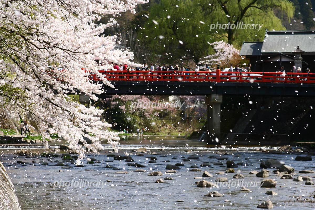 Alpine spring of Nakahashi Photo