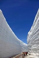 Snow Otani Stock photo [2565474] Spring