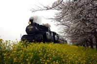 Steam locomotive Stock photo [2566796] SL