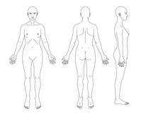 Schematic representation of the human body women [2566828] Human