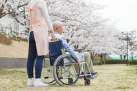 Senior Helper Stock photo [2567447] Wheelchair