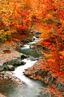 Nakatsugawa Valley (Bandai Azuma Lake line) Stock photo [2568524] Nakatsugawa