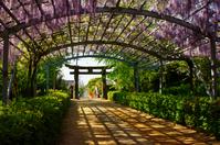 Yamada Hiyoshi Shrine Stock photo [2568922] Yamada