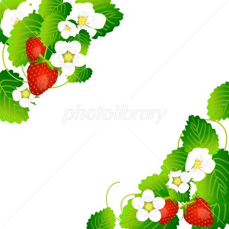 苺のかわいいイラスト フレーム イラスト素材 フォトライブラリー Photolibrary