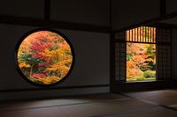 Autumn leaves of source light hermitage Stock photo [2674546] Genkoan